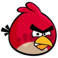 Rovio mobile - Angry birds